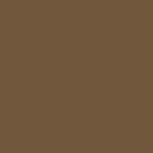 PROCORE A1 Brown Earth PC6272