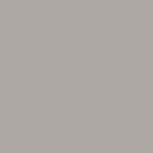 PROCORE A1 Cool Grey PC6216