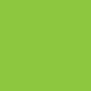 PROMINIUM Electric Lime PM6410