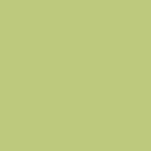 PROCORE A1 Frisky Green PC6222