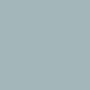 PROCORE A1 Grey Blue PC6230