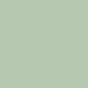 PROCORE A1 Lime Sherbert PC6221